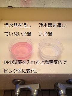 dpd01a.jpg