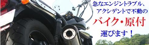 bike490.jpg